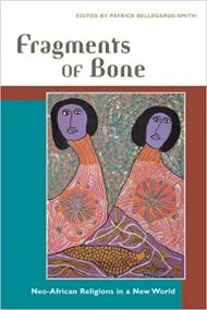 fragments of bone cover